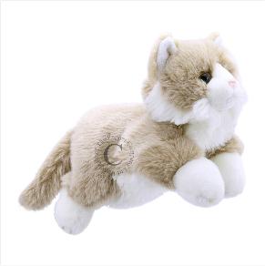 pc001828_cat_beige&white